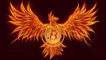 Bitcoin Will Rise & Reach